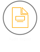 business_audit